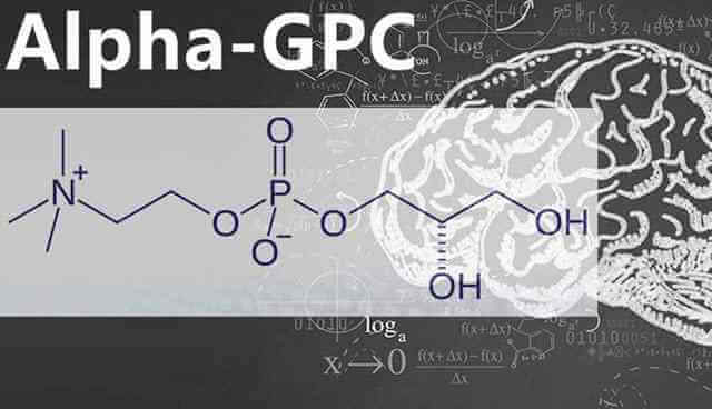 alpha gpc reviewed